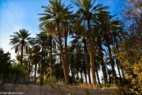Chehar farsakh village