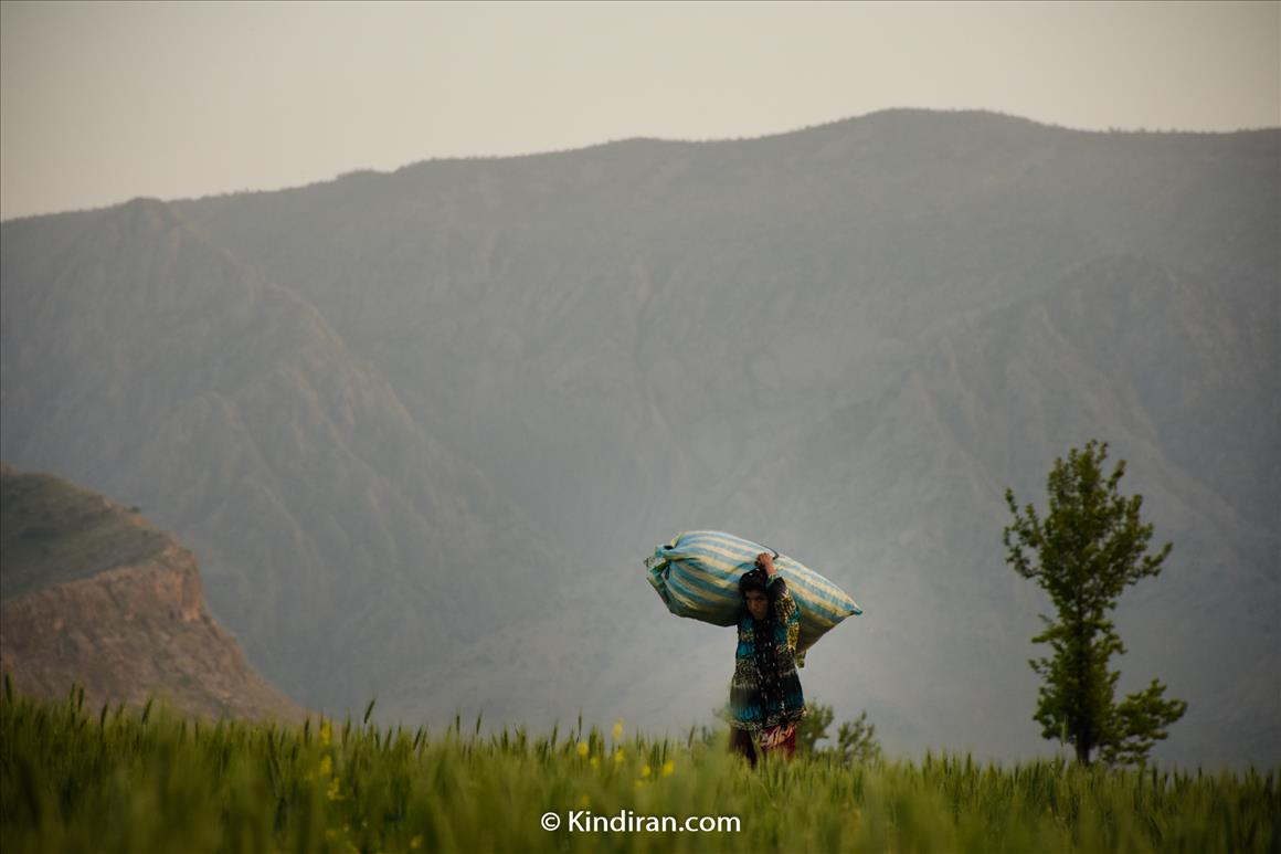 A Nomad Woman in Soraya Village