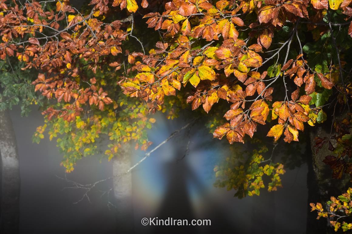 قله درفک؛ سرزمین مه و خورشید