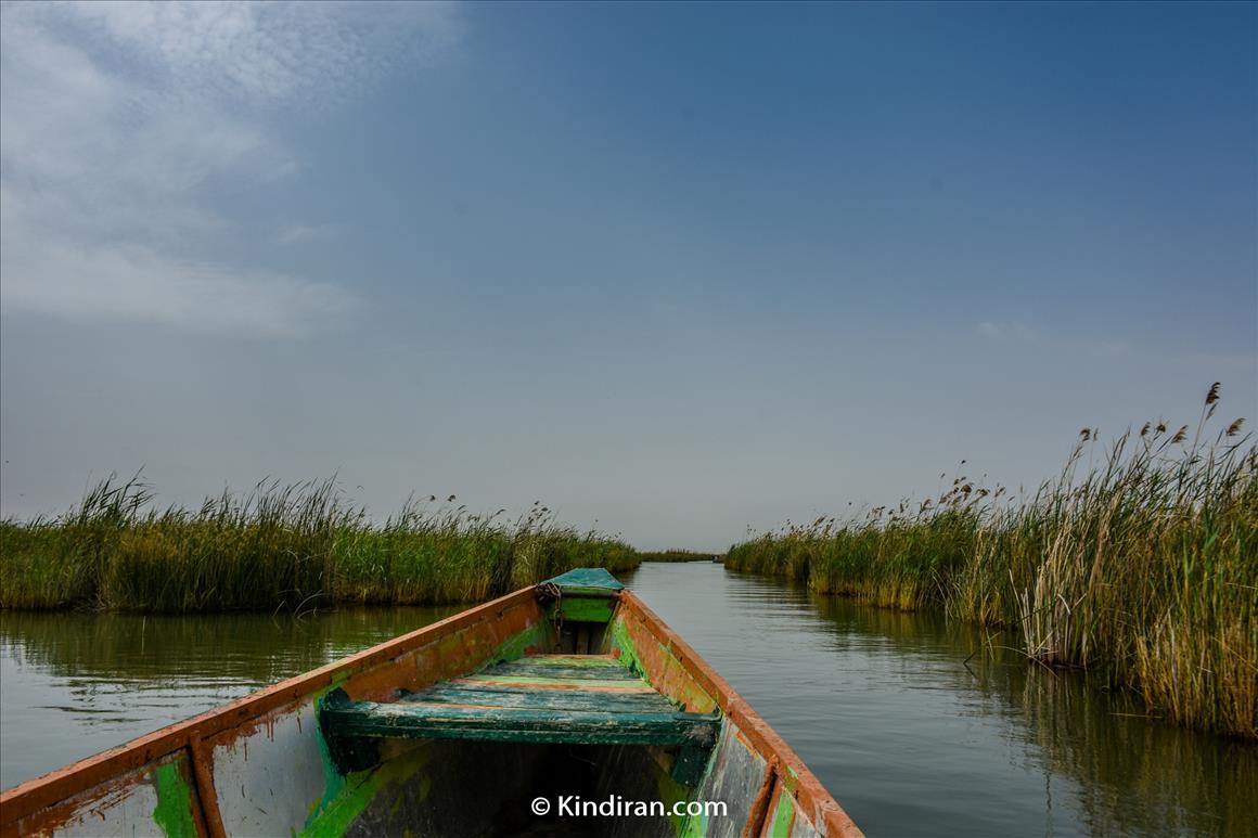 Shadegan International Wetlands