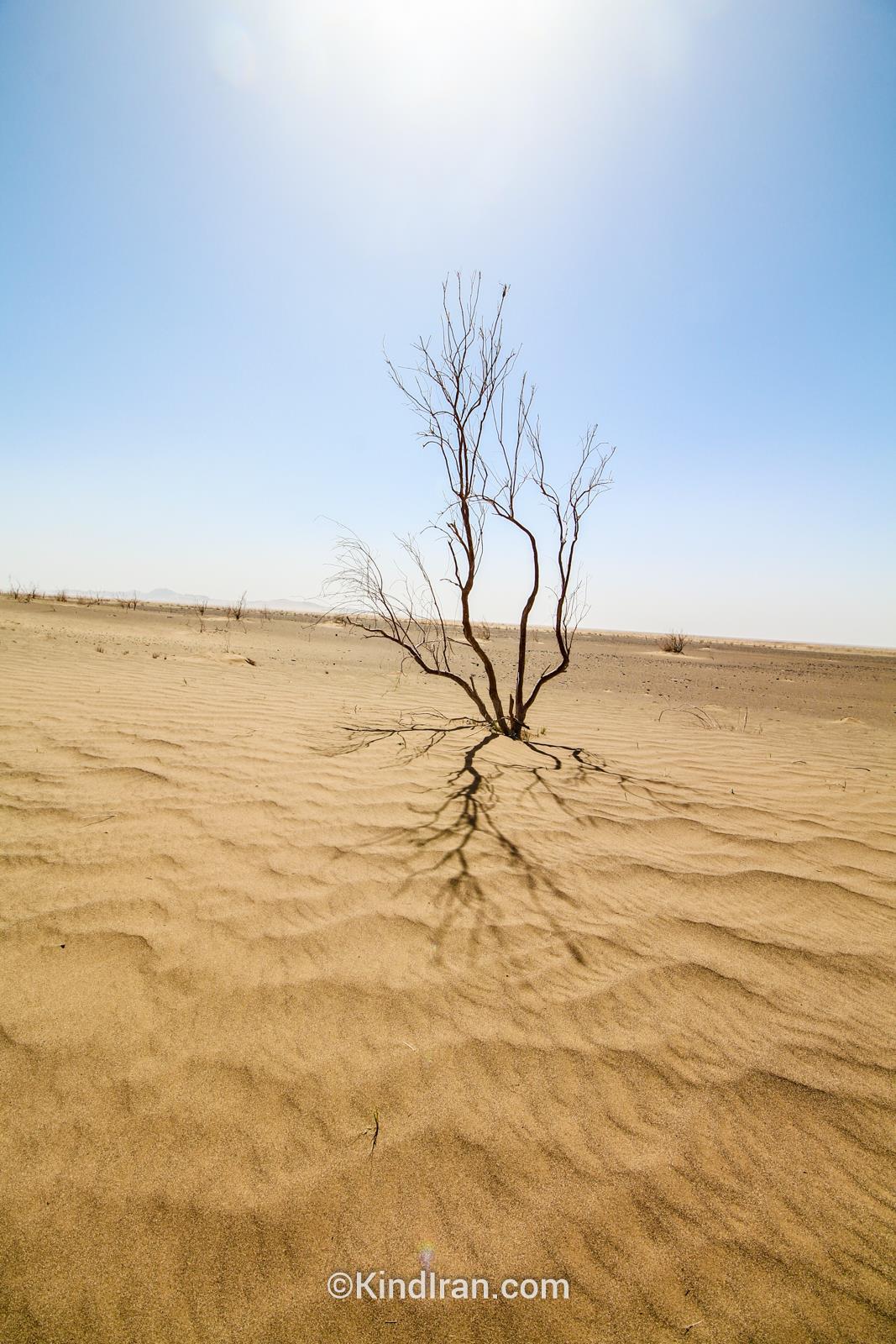 Desert Khur to Tabas