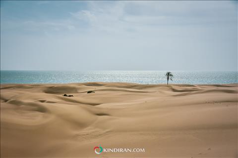 جنوب استان سیستان و بلوچستان
