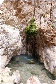 چشمه آب سرد قنبر