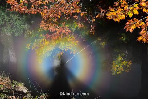 رنگین کمان در مه